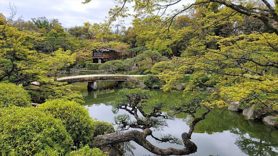 神戸の相楽園で日本庭園を眺めながら、檸檬香る爽やかなマリトッツォはいかが?