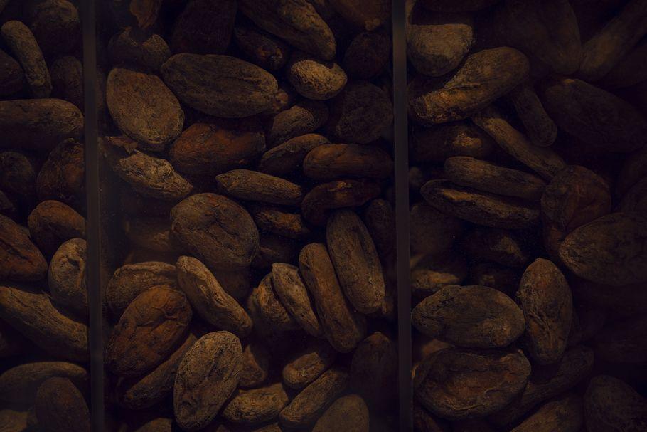 """職人の「手しごと」で奏でる""""本当に美味しいチョコレート""""とは? nel CRAFT CHOCOLATE TOKYO「mikiのショコラティエ探訪記vol.05」"""